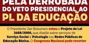 Abepss integra articulação para derrubada do veto ao PL Educação e lamenta decisão do presidente